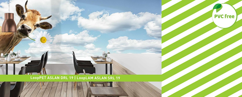 ASLAN, Schwarz GmbH & Co. KG